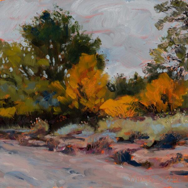"""Dry Creek Bed"" by Sally Stevens, 6x6"""